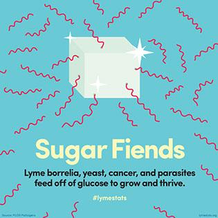 27_sugar316x316