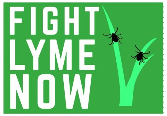 fight-lyme-now-978x681