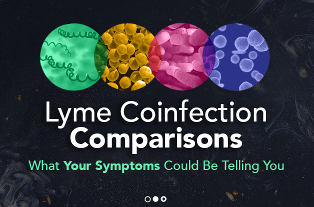 lyme-coinfection-comparisons-what-symptoms-could-be-telling-you